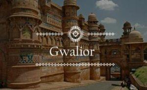 Solar Photovoltaic Module Exporter in Gwalior
